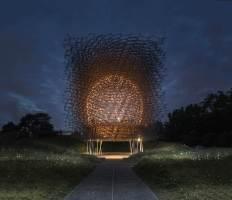 hive night