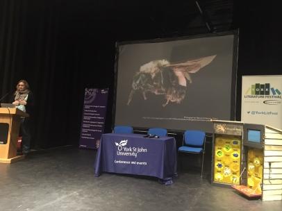 Debbie Maxwell talks bees